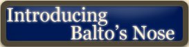 Introducing Balto's Nose